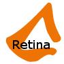 Responsive Design Test: Retina Bild