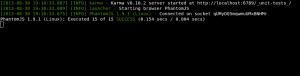 003-Screenshot_Karma-wartet-nach-einem-erfolgreichem-Testlauf